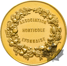 FRANCE-Medaille-or-ville-de-Lyon-Superbe